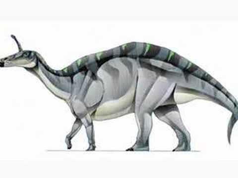 Lambeosaurus skull