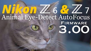NIkon Z6 & Z7 • Animal Eye-Detect Autofocus Firmware Update 3.00