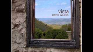 David Wilcox - Vista - No Doubt About It