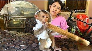 Dodo Happy Eating Delicious Kralan, Baby Dodo Funny