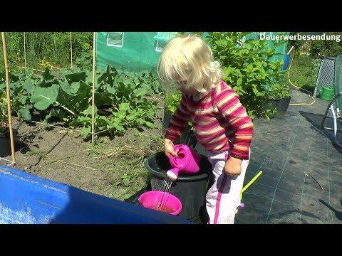 Garten Mitte Juni Gärtnern mit Kindern spielen im Dreck