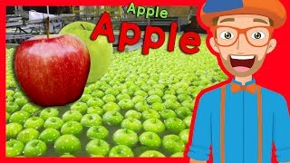 Fruit for Kids with Blippi | Apple Fruit Factory Tour