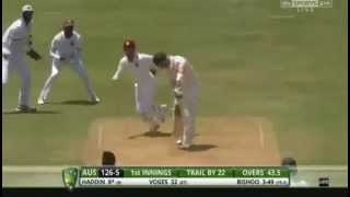 Ball of the century By Devendra Bishoo to get rid of Brad Haddin on 4 June 2015
