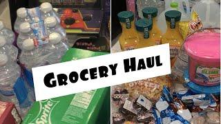Quarantine Grocery Haul | $1300 | Walmart | Costco |target