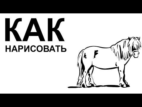 Видео как нарисовать мультяшную лошадь