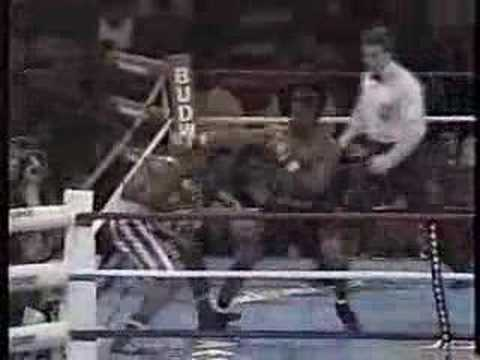 Pernell Whitaker vs Diosbelys Hurtado-part 5/6