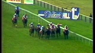 1986 Dubai Champion Stakes