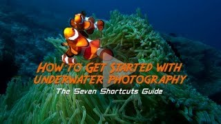 How to Get Started With Underwater Photography_ Free Online Photography Lessons from Tommy Schultz