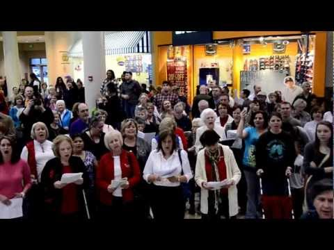 Hallelujah! Flash Mob Choir at Mall at Turtle Creek in Jonesboro, AR 12/8/12
