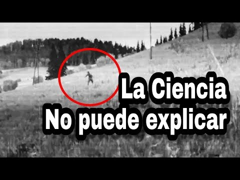 Cadáveres que REGRESAN A LA VIDA - Vídeos reales e impactantes.
