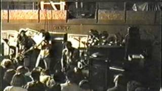 Watch Acid Bath Locust Spawning video