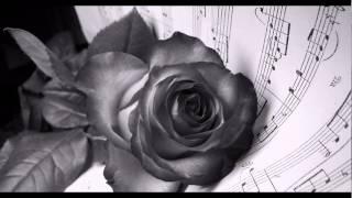 Watch Alessandro Safina Insieme A Te La Via Dei Canti video