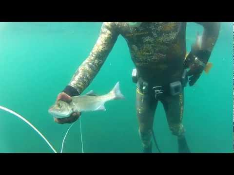 UKRAINIAN SPEARFISHING TEAM VIGO 2012 Лагутин Лаврак
