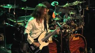 Watch Styx I Dont Need No Doctor video