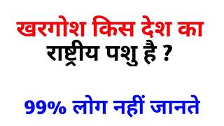 10 Interesting Gk Question In Hindi || Most Important General Knowledge Question || #Gk  ashu study