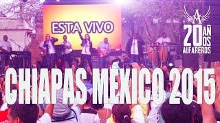 ALFAREROS EN CHIAPAS MEXICO 2015