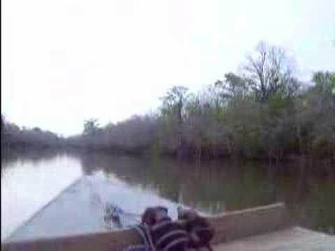 Apalachicola River Fishing Trip Racing