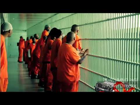 Harley Quinn & The Joker - High As Me ft. Wiz Khalifa, Snoop Dogg & Ray J (Music Video)
