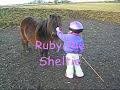 Parelli Natural Horsemanship 3-Year-Old Student Mirren with her Pony