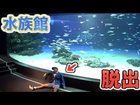 水族館貸し切ってリアル脱出ゲームしてみた。(YouTuber初)