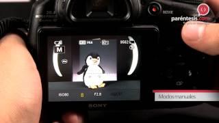 Reseña en video de la Cámara digital Sony Cyber-shot (DSC - HX300