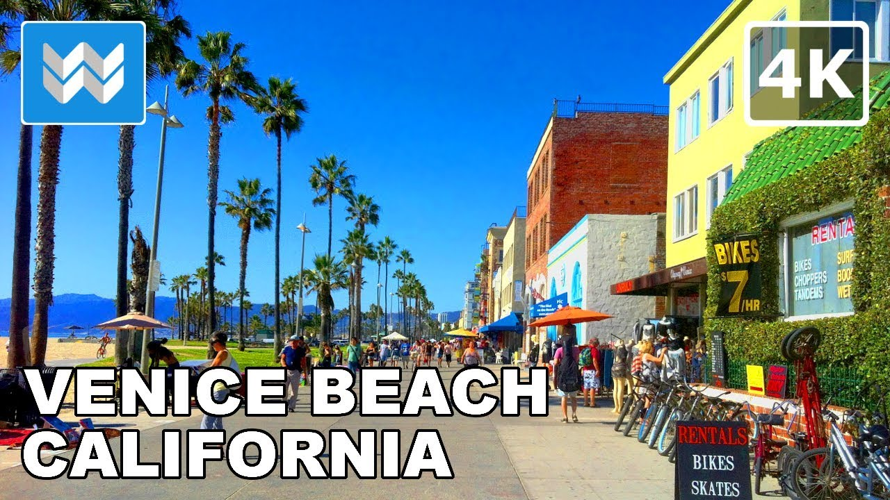 Venice beach restaurants