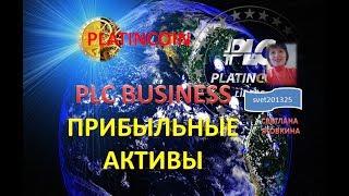 PLATINCOIN  BUSINESS Реальные прибыльные активы