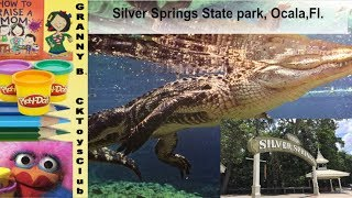 Silver Springs,  Ocala, Fl.  Travel with Granny B.  and enjoy the famous glassbottem