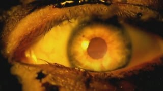 Watch Slayer Eyes Of The Insane video
