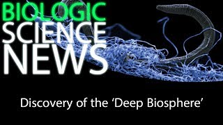 Science News - Discovery of the 'Deep Biosphere'