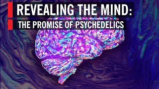 Revealing the Mind: The Promise of Psychedelics