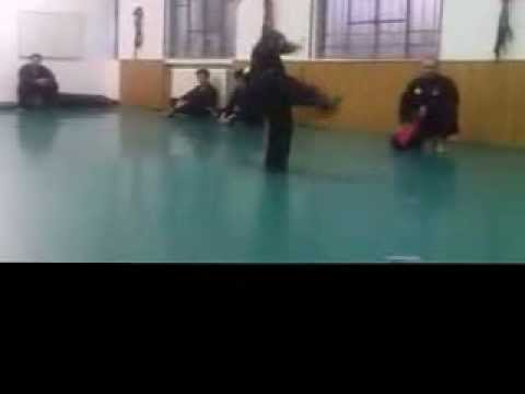 training exhibition, arnis pencak silat Image 1