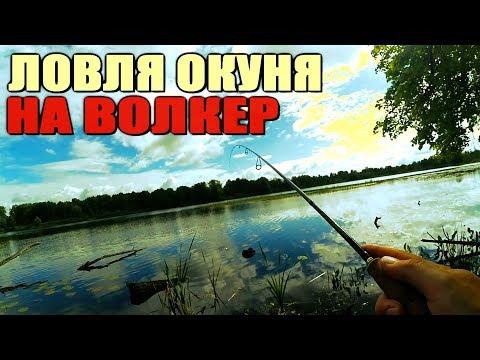 ютуб профессиональная рыбалка