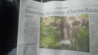 Cows bad for the environment??????