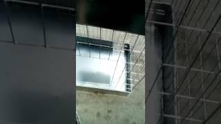 Chuồng gà tre 2 tầng 60*80 kẽm 3ly có khay 800k/2 bô , đt 090287