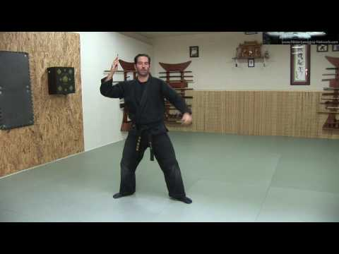 Bo Shuriken - Throwing Darts / Spikes - Ninja Training Free Video Blog - Ninja weapons Image 1