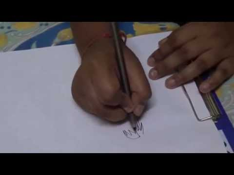 How to Draw Coconut Tree  Quick Methods within a minutes HD Video
