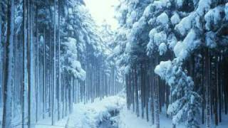 download lagu The Nutcracker Ballet Tchaikovsky - Act I: Ix. Forest gratis