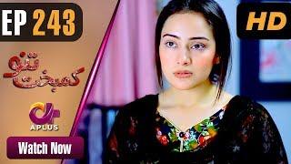 Drama | Kambakht Tanno - Episode 243 | Aplus ᴴᴰ Dramas | Tanvir Jamal, Sadaf Ashaan