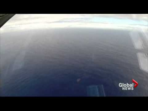 Australian PM Abbott still confident signal in Indian Ocean is MH370 black box
