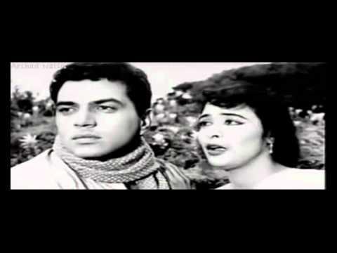 Agar Mujhse Mohabbat Hai video