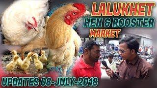 LaluKhet Sunday Birds & hen Rooster Market 8-July- 2018 Jamshed Asmi Informative Channel