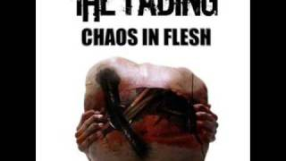 Vídeo 4 de The Fading