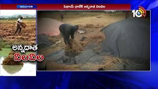 రైతును నిలువునా ముంచిన పెథాయ్... | Telugu States Farmers got huge loss by Phethai Cyclone