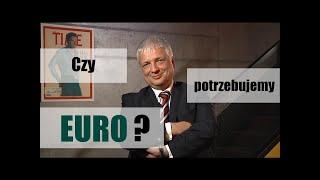 Czy potrzebujemy wspólnej waluty Euro?