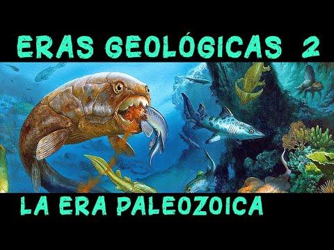 TIEMPOS REMOTOS 2: La era Paleozoica y los primeros animales