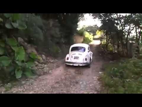 VW BUG  OFF ROAD
