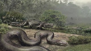 World's BIGGEST Snake ever, Titanoboa