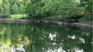 Turtle Creek Park, a Hidden Downtown Dallas Neighborhood