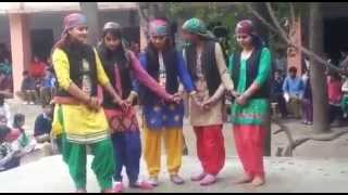 Himachali Dance By Pahari Girls